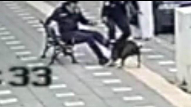 Manisa'da iki polis pitbull saldırısına uğradı