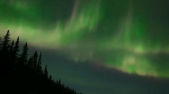 Alaska'da Kuzey Işıkları'nın büyüleyici dansı